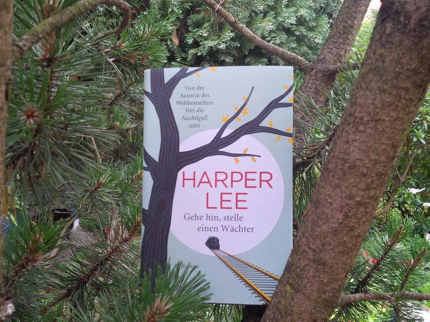 Buch auf dem Baum