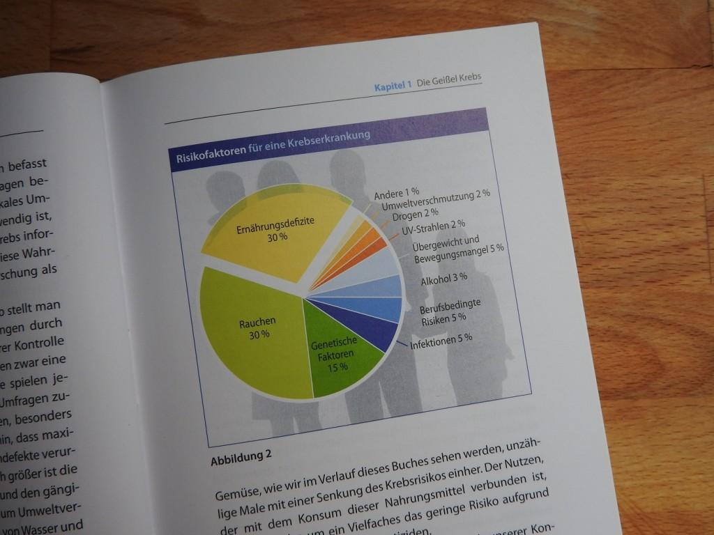 Riskikofaktoren (S. 23)
